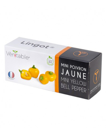 Véritable Lingot Mini yellow bell pepper