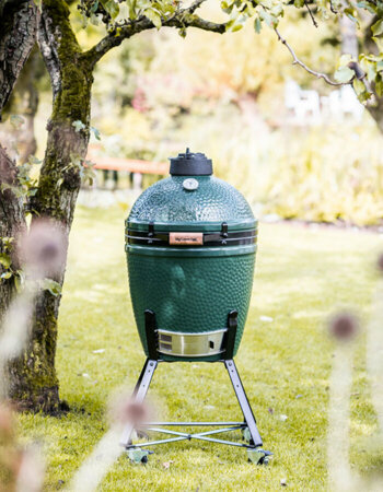 Big Green Egg Medium + stand