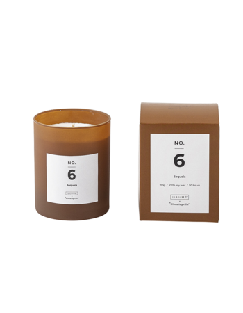 Sequoia Scented Candle Soy wax