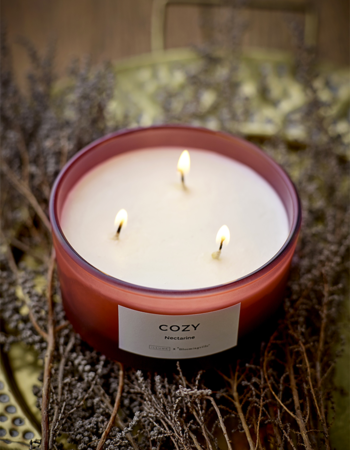 Cozy Nectarine Candle Soy wax